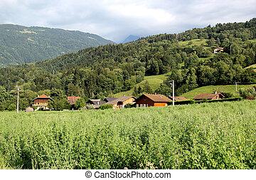Landscape of vegetation and houses, France - Landscape with...
