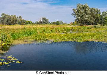Landscape on a small river Merla in central Ukraine