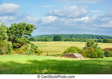 Landscape on the Mecklenburg Lake District.