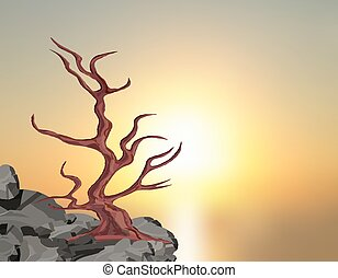 Landscape on the sunset. A curved tree without leaves on a rock among the stones. Oak, cherry, sakura. illustration