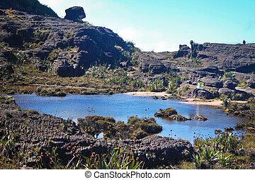 Landscape Over the Roraima
