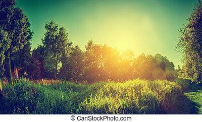 landscape, panorama., platteland, ouderwetse , zonnig, groene