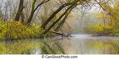 Landscape picture with fog over river or lake and green trees