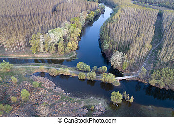 Aerial image of beautiful river and forest landscape shot with drone