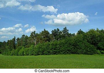 Landscape South Bohemia
