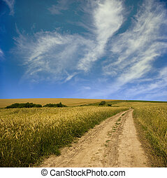 Landscape - Rural dirt road through the field