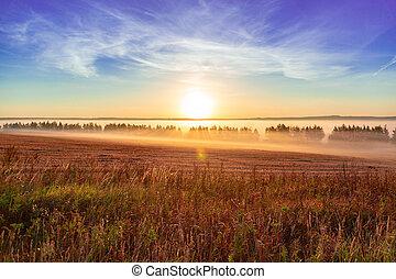 Landscape sunrise at summer. Foggy morning on meadow. Filtered image: cross processed effect. beautiful misty sunrise landscape.