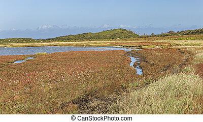 Panorama of Nature reserve De Slufter on the Waddenisland Texel, North Holland, Netherlands