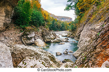 landscape the rocky bed of a mountain river in autumn