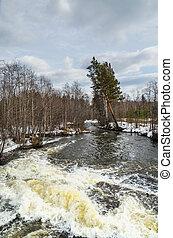 Landscape. The spring flood.