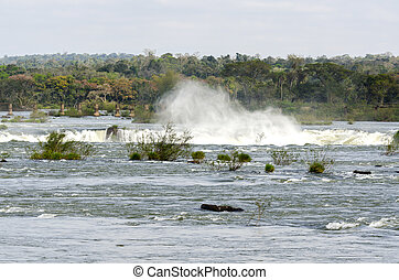 iguacu waterfalls in Brazil