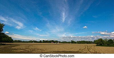 Landscape topsoil