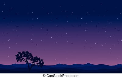 Landscape trees at night silhouettes