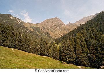 landscape, van, berg, alpen