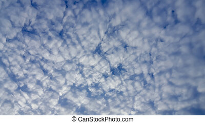 landscape, van, de, duidelijke lucht