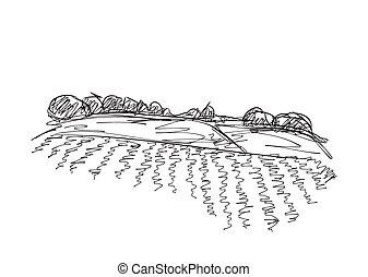 landscape, velden