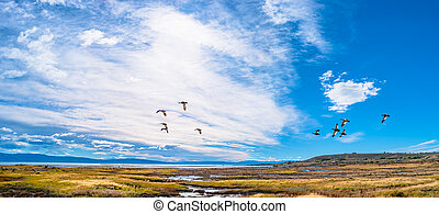 Landscape view from Calafate, a town in Patagonia, Argentina