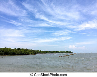 Landscape view of coastal forest conservation site in blue sky