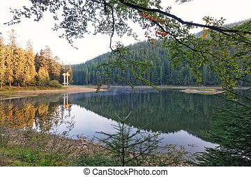 Landscape view of lake Synevir in the Carpathians.