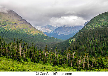 Landscape view of mountains and forests in Glacier NP