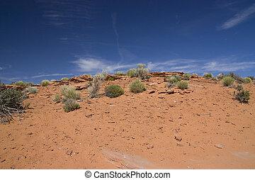 landscape view of the arizona desert in USA