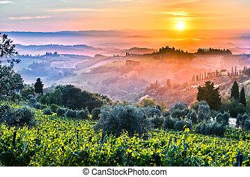 Landscape view of Tuscany, Italy during sunrise.