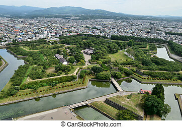 Landscape visible from the tower Goryokaku.