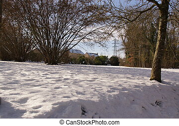 Landscape wintry, snow and sun