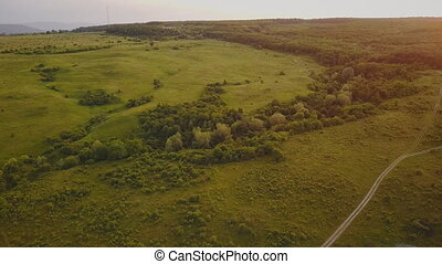 landscape with a bird's eye view - landscape lawn with trees...
