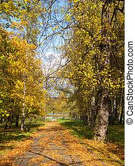 path in an autumn park
