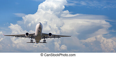 Landscape with big white passenger airplane is flying