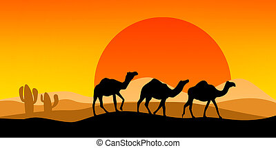 Landscape with camel silhouette with sunset