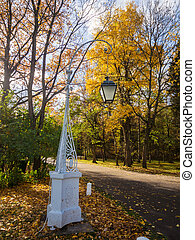 decorative lantern in autumn park