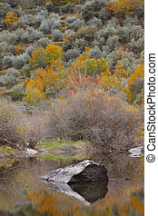 Landscape with forest and lake in autumn time. Spain