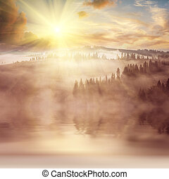 Landscape with forest in fog on hills