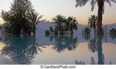 Landscape with glossy pool, palm trees and misty mountains -...