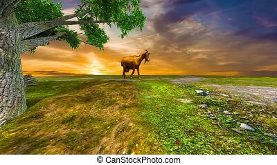 landscape with goat grazing in meadow of grass on hill top