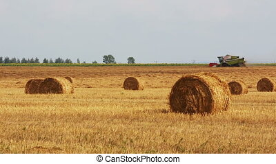 landscape with harvested bales of straw and combine-harvester