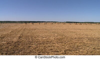 Landscape with harvested bales of straw