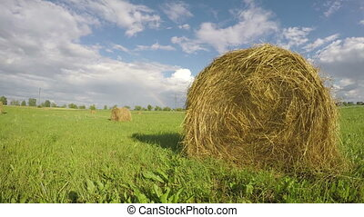 landscape with hay bales on field