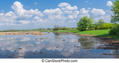 Landscape with lake and cloudy sky reflection in it