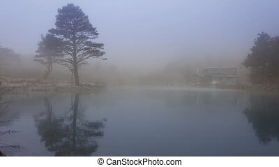 Landscape with lake covered with thick fog - Landscape with...