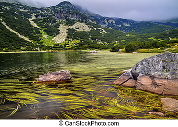 Landscape with lake in the mountain