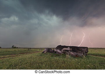 Landscape with lightning striking behind dead tree trunk