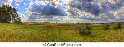 Landscape with meadow and trees under cloudy sky