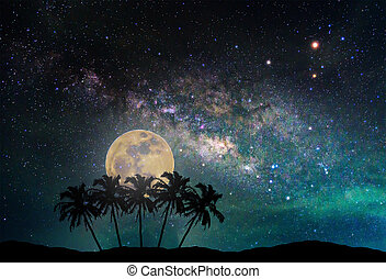 Landscape with Milky way galaxy. Night sky with the moon and silhouette coconut plam tree on the mountain. Long exposure photograph. (Elements of this moon image furnished by NASA)