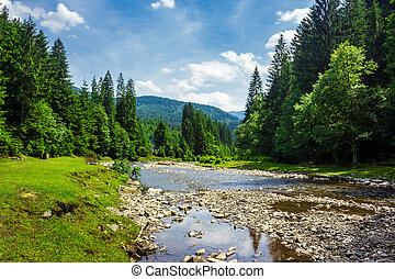 landscape with mountain river