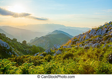 Landscape with mountains in the evening sunsent at Picos de Europa