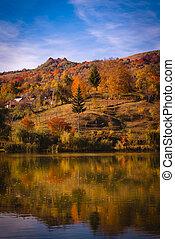 Landscape with Nucsoara Lake in autumn