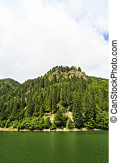 Landscape with Petrimanu Lake in Romanian mountains